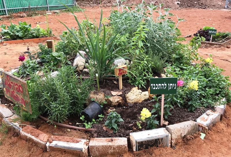 גינה קהילתית ברמת גן