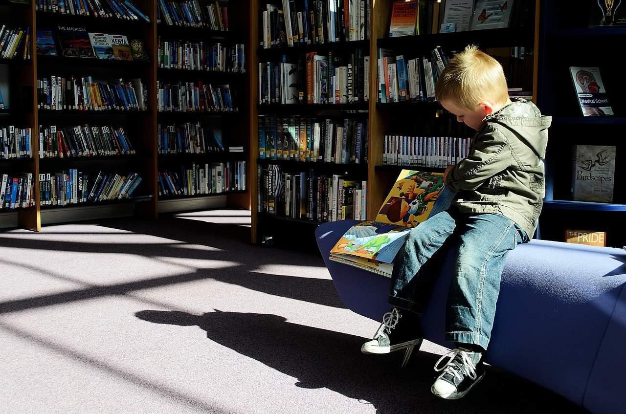 גן יוקם בספרייה העירונית, צילום אילוסטרציה